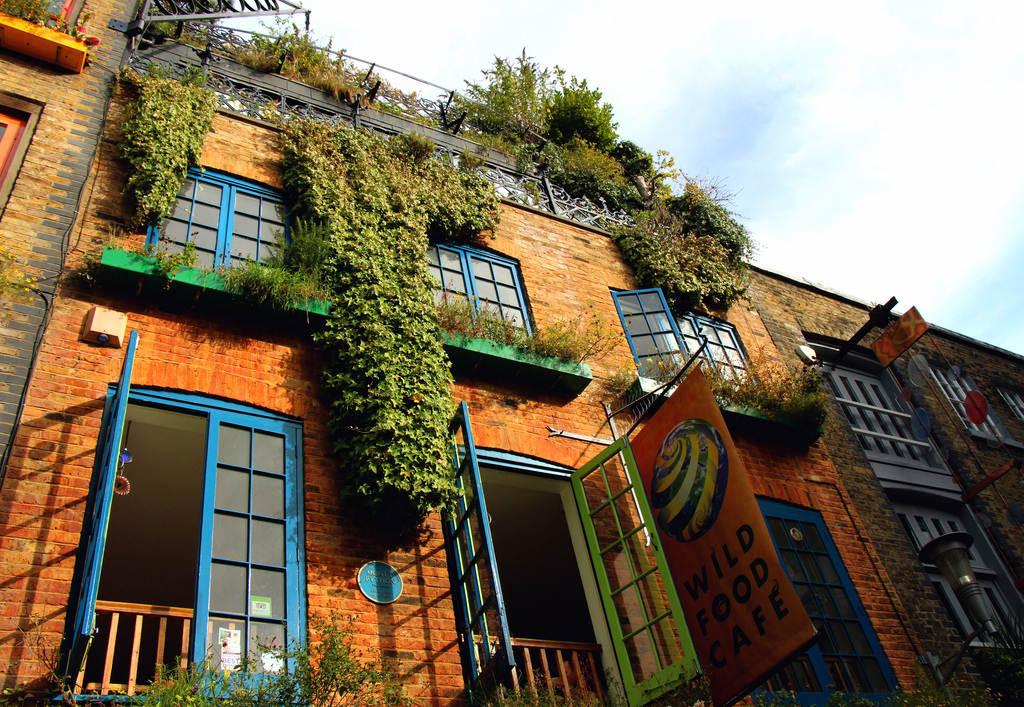 Neal's Yard — яркий уголок Лондона
