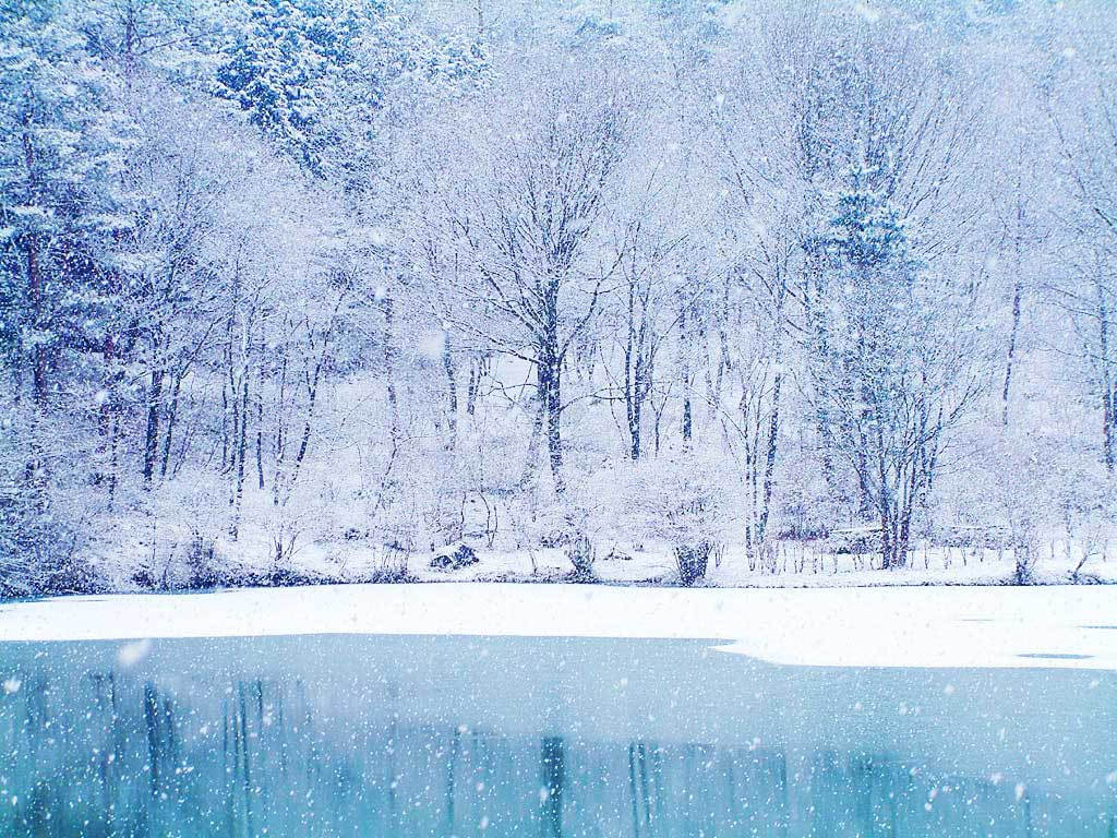Beautiful Winter Pictures 6