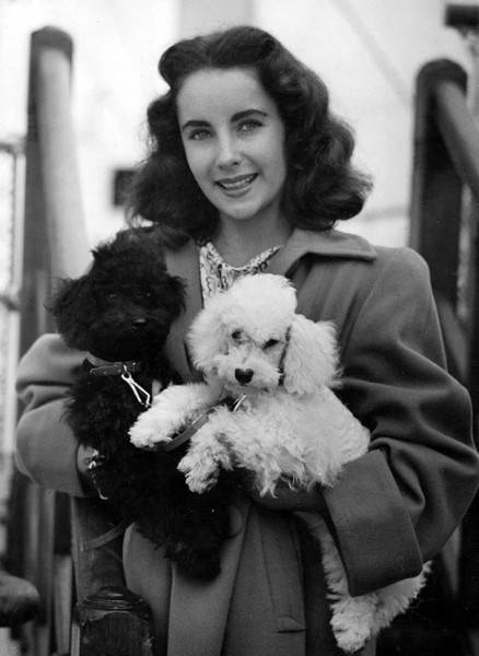 famous-historic-people-with-their-pets-cats-dogs-21