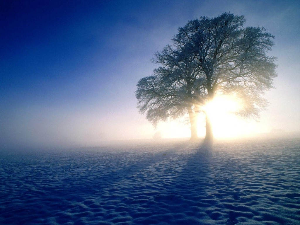 winter-inspirations-windows-scenery-desktop-wallpaper-1024x768