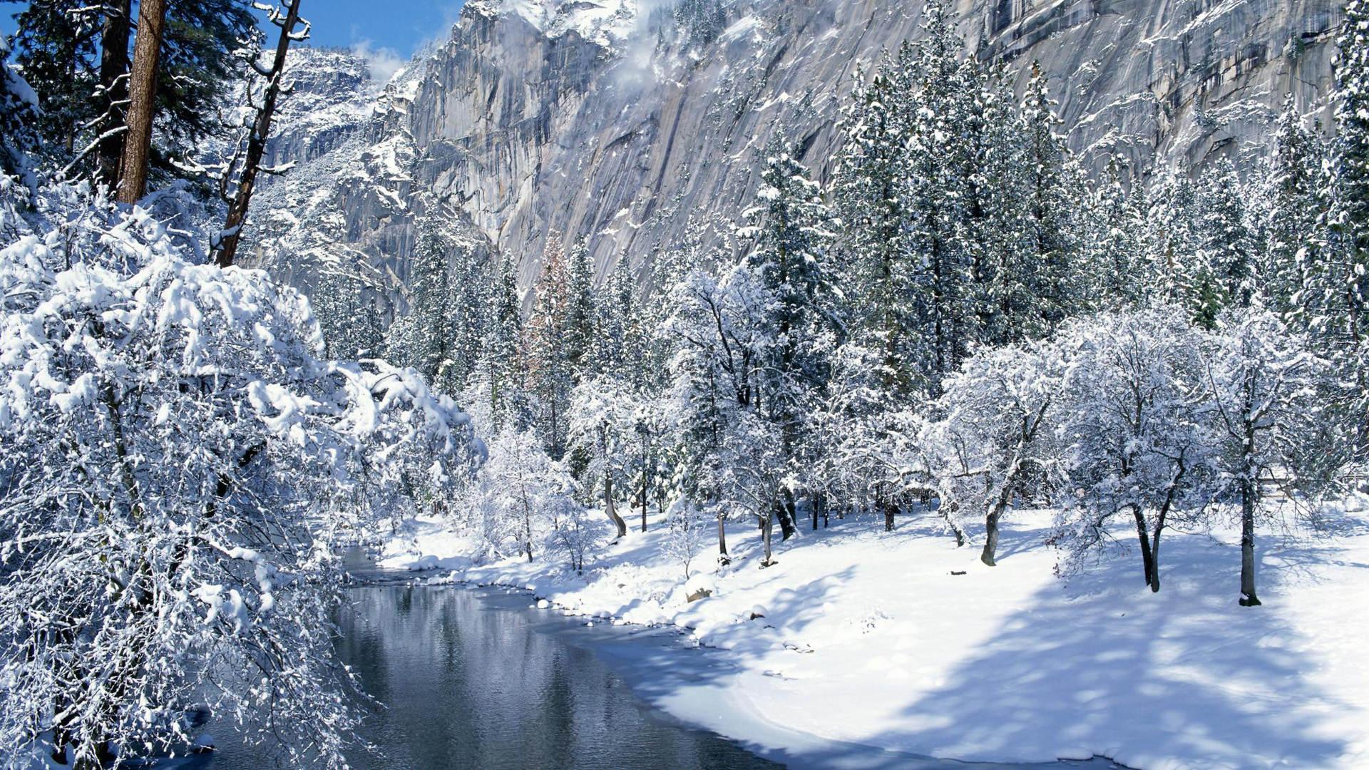 winter-wallpaper-13