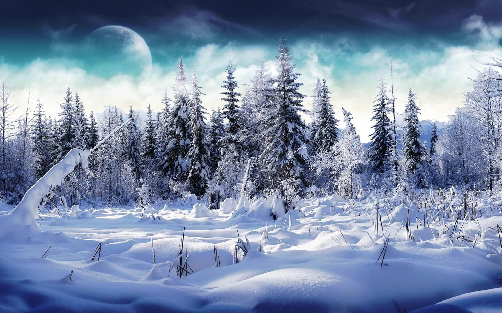 winter-wallpaper-20