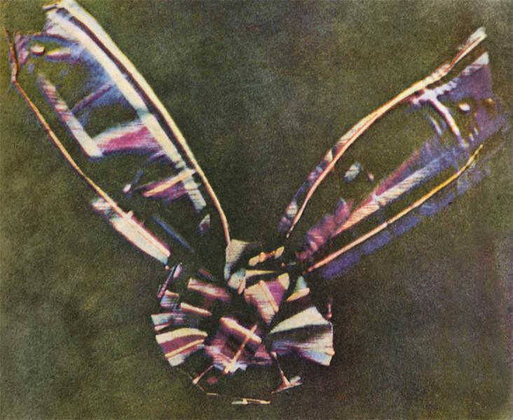 Tartan Ribbon Исторические фотографии