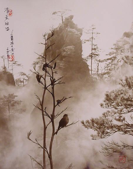 Дон Хонг-Оай 10