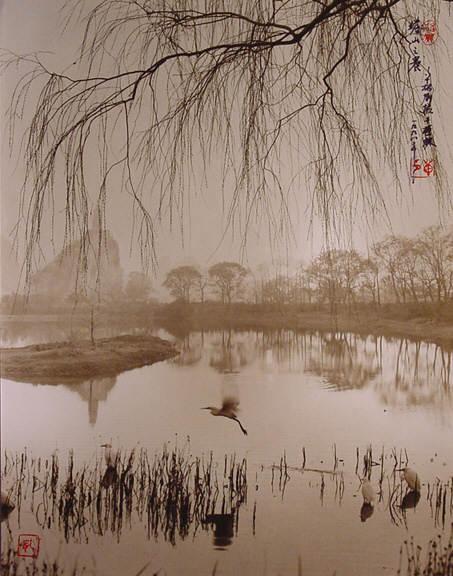 Дон Хонг-Оай 5