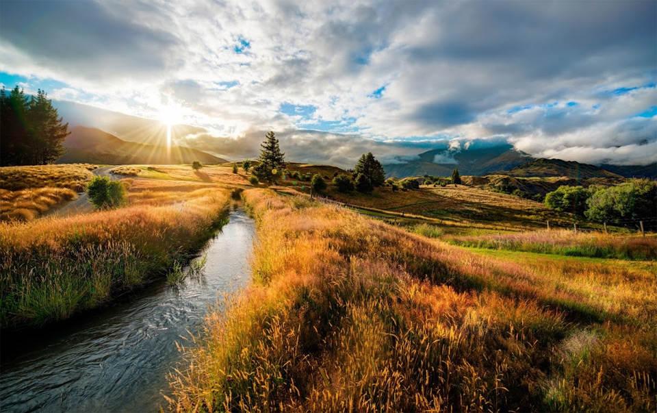 Холмы Новая Зеландия