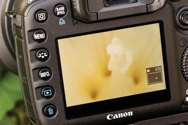 типичные ошибки фотографов 2