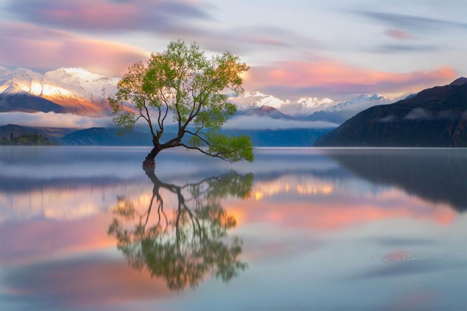 уонака Новая Зеландия