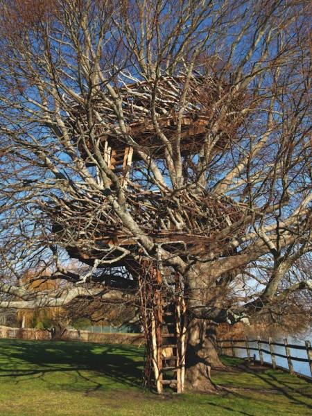 Домик на дереве 2