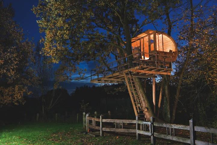 Креативный домик, размещенный сразу между двумя деревьями - ольхой и дубом в Оснабрюке, Германия