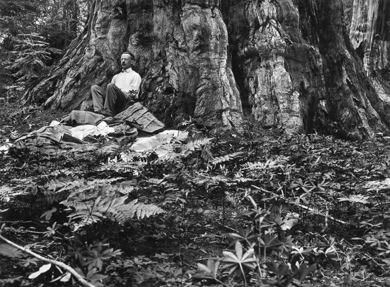 Фотография Гилберта Х. Гросвена, 1915 год
