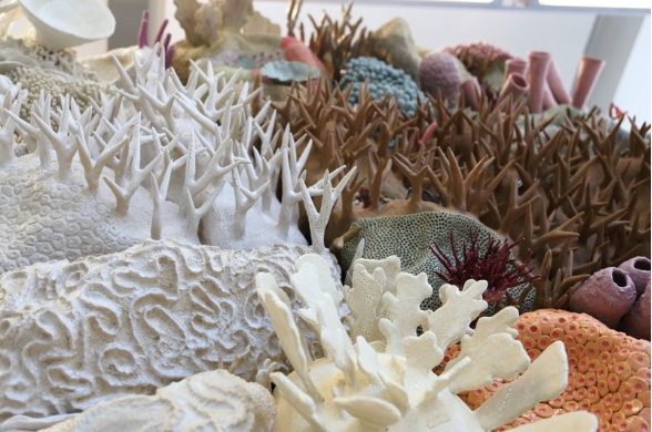 Керамические коралловые рифы Кортни Мэттисон (Courtney Mattison) 3
