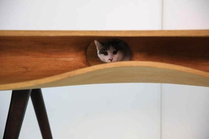 стол для котов