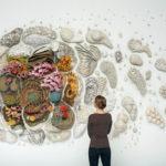 Керамические коралловые рифы Кортни Мэттисон
