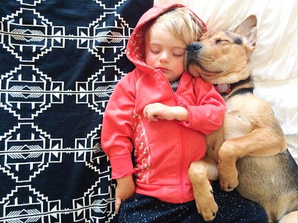 Трогательная дружба щенка и ребенка