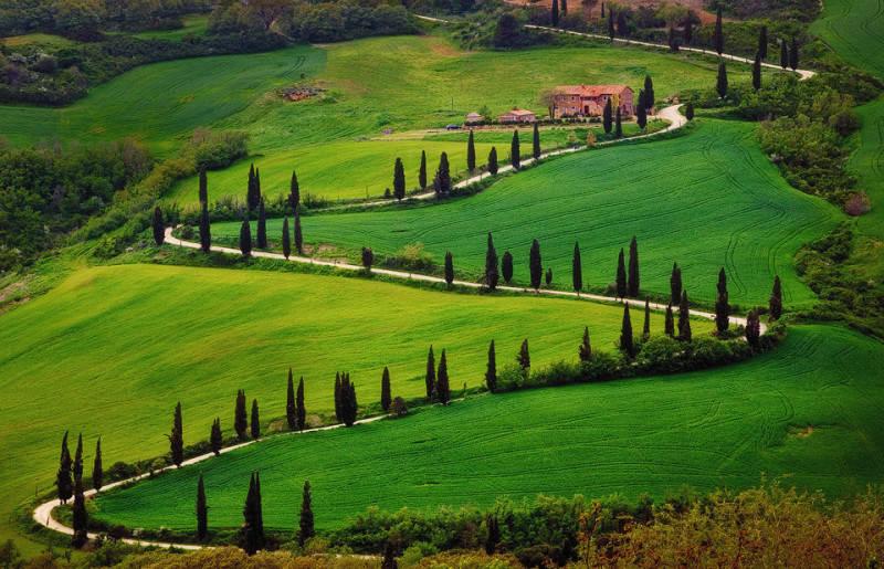 Зеленый цвет в фотографии  17