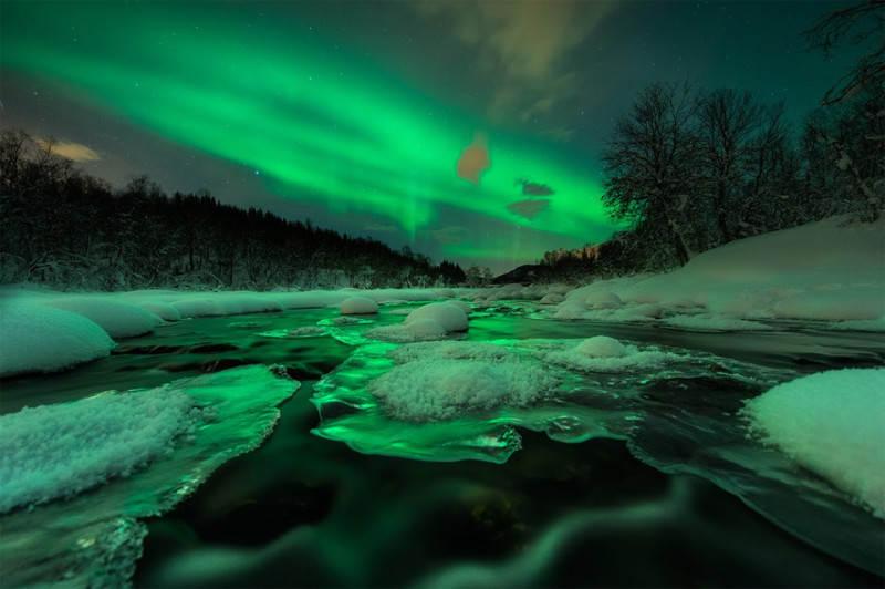 Зеленый цвет в фотографии 18