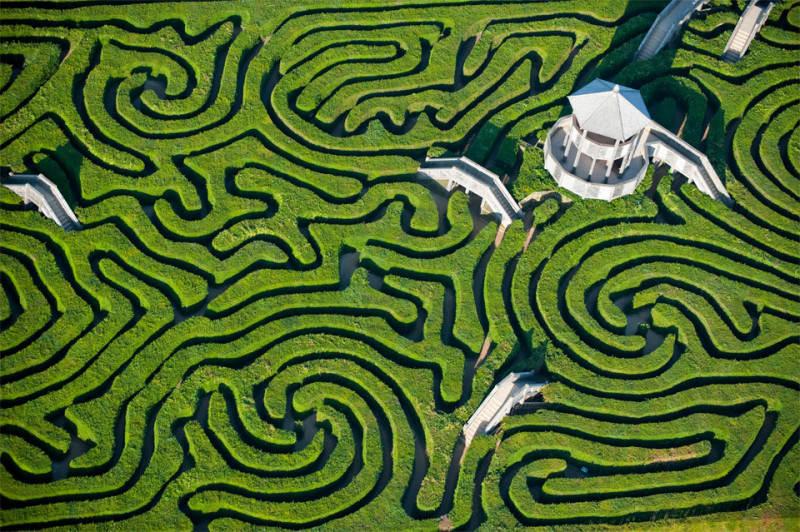 Зеленый цвет в фотографии 2