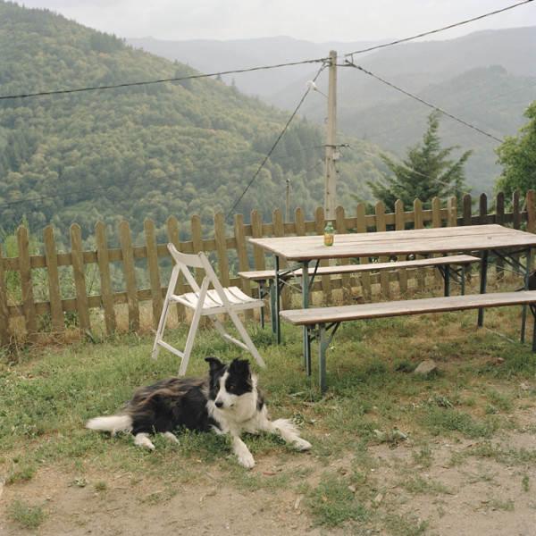 Антуан Бруй ( Antoine Bruy) и его документальный фотопроект 14