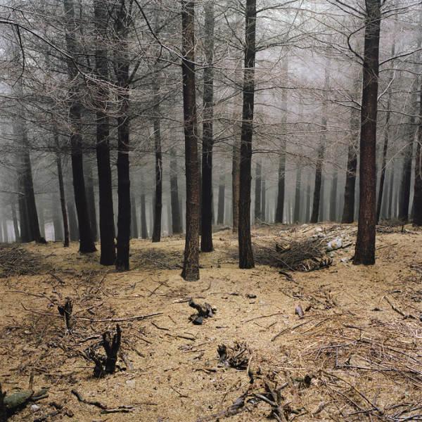 Антуан Бруй ( Antoine Bruy) и его документальный фотопроект 3