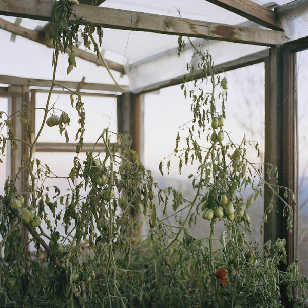 Антуан Бруй ( Antoine Bruy) и его документальный фотопроект 9