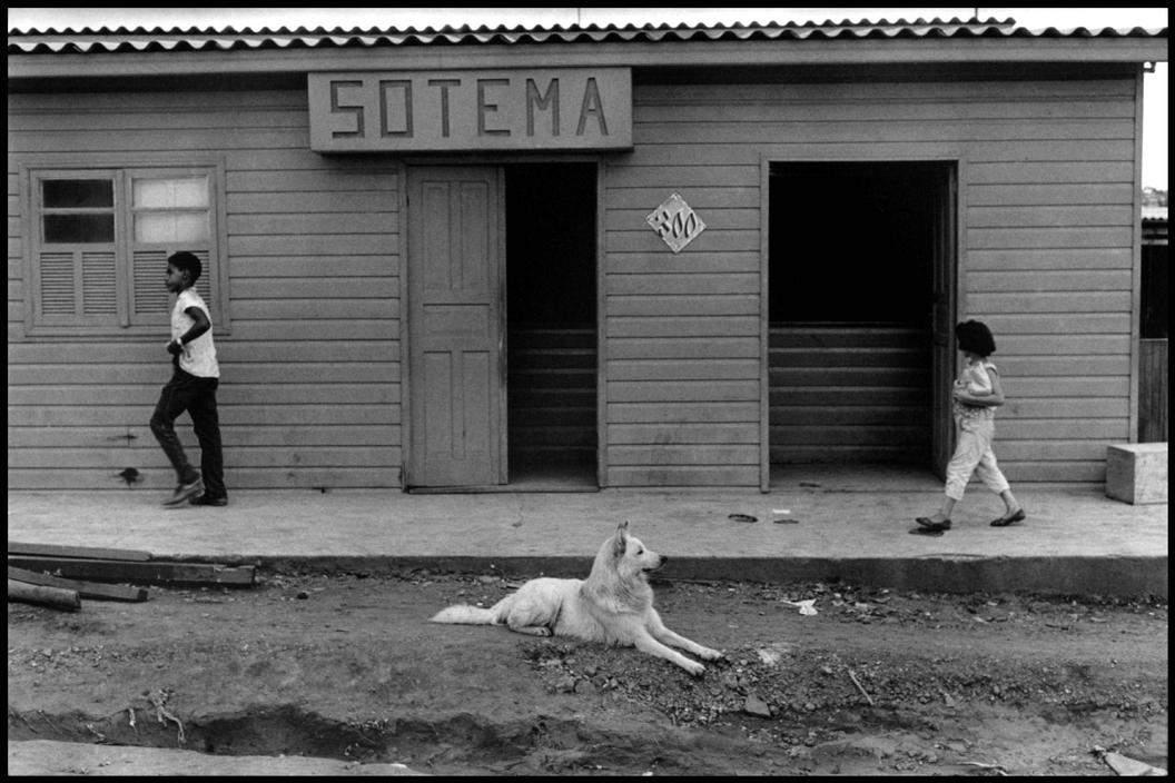 10 самых влиятельных фотографов всех времен - Эллиотт Эрвитт (Elliott Erwitt ) 3