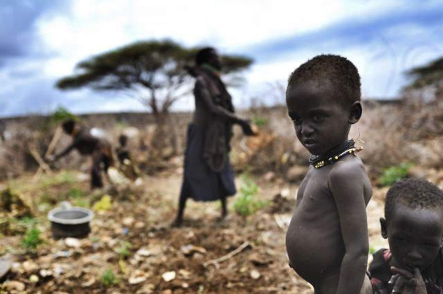 Самые богатые фотографы в мире. Lynsey Addario