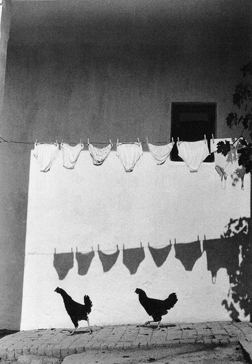 Потрясающие черно-белые фотографии Bruno Bourel