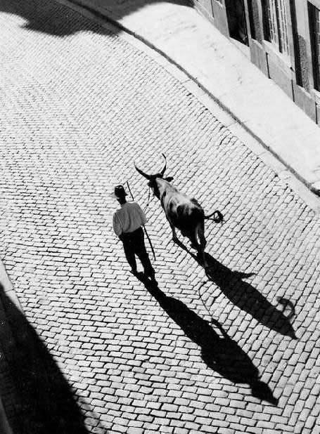 Потрясающие черно-белые фотографии Eduardo Teixeira Pinto