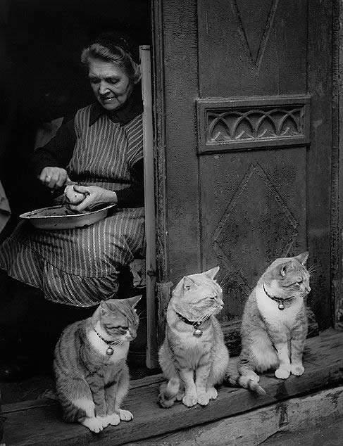Потрясающие черно-белые фотографии Toni Schneiders
