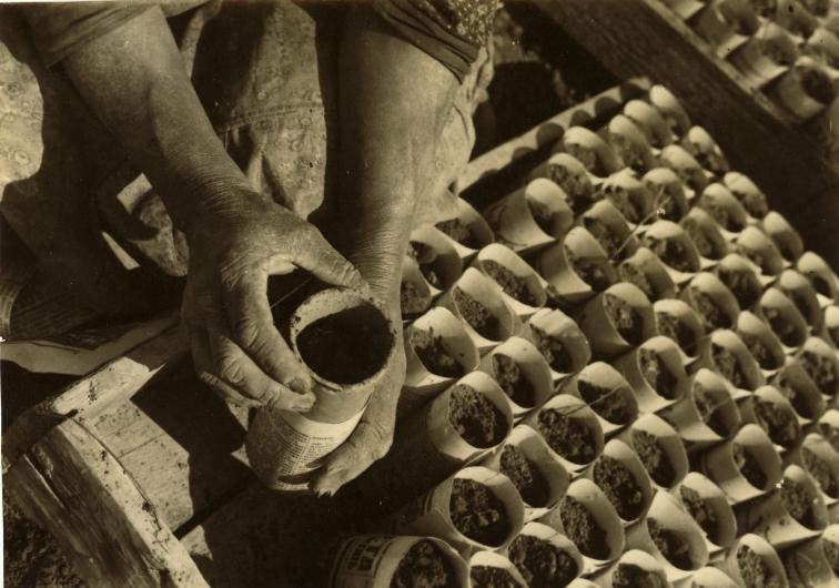 5 Советский фотограф Макс Пенсон
