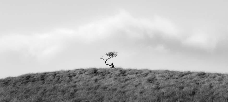 Американский фотограф Брайан Кософф (Brian Kosoff) 5