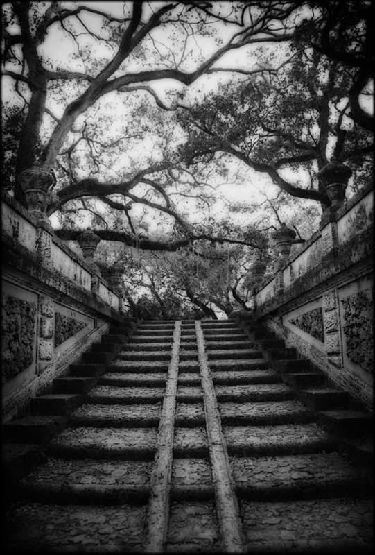 Джефф Заруба (Jeff Zaruba) – американский фотограф 10