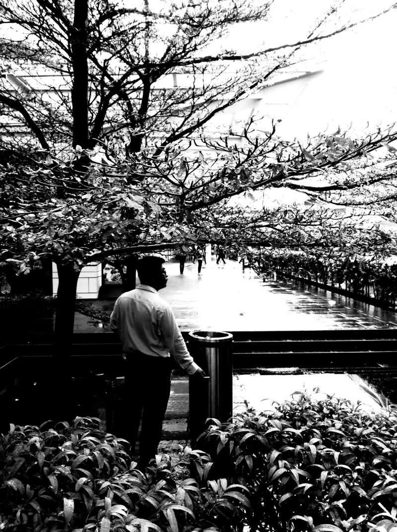 Фотографии Сингапура. Тай Кей Чин (Tay Kay Chin) 12