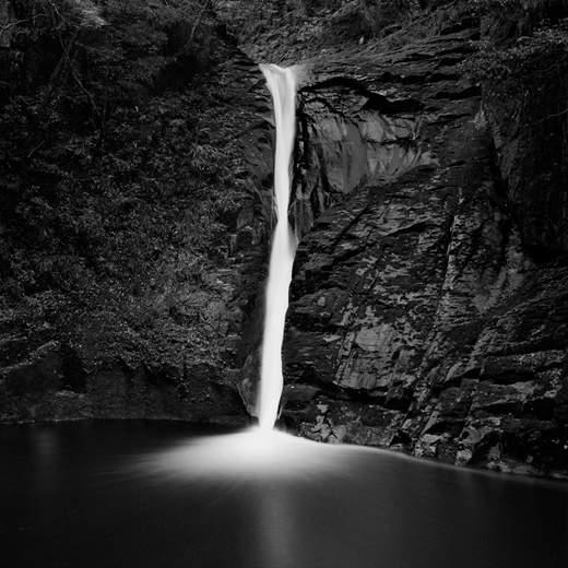 Майкл Левин (Michael Levin) современный американский фотограф