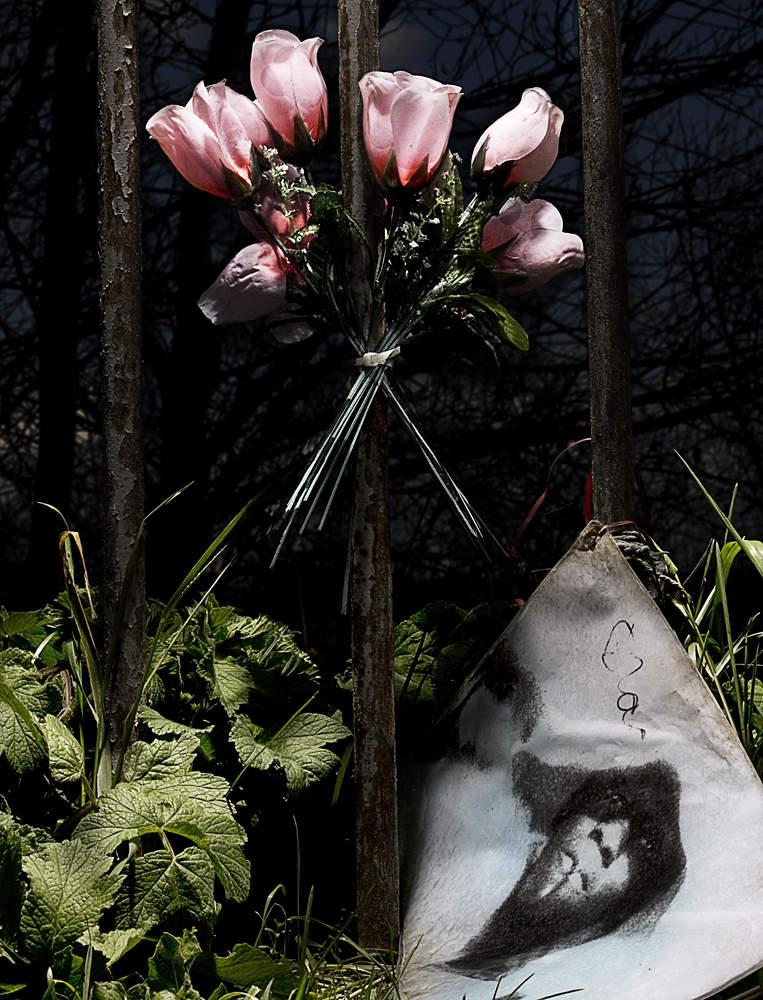 Многогранный современный фотограф Энди Бартер (Andy Barter)