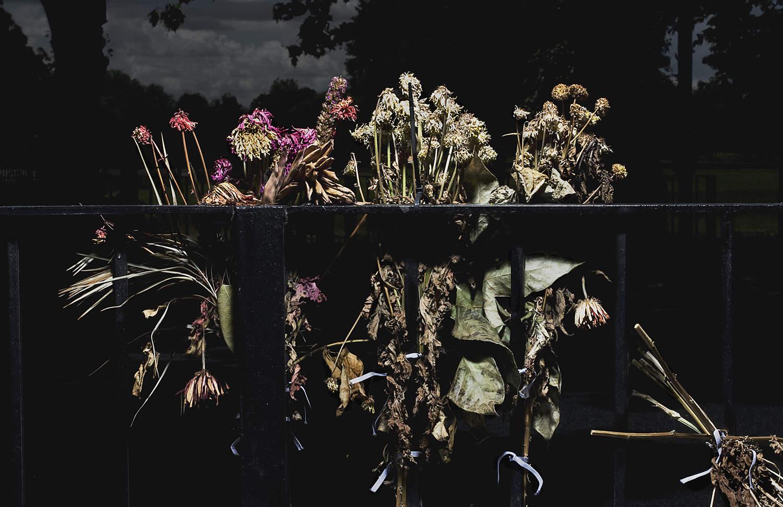 Многогранный современный фотограф Энди Бартер (Andy Barter) 22