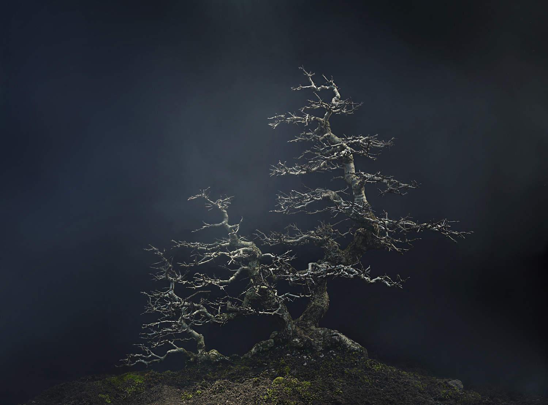 Многогранный современный фотограф Энди Бартер (Andy Barter) 9