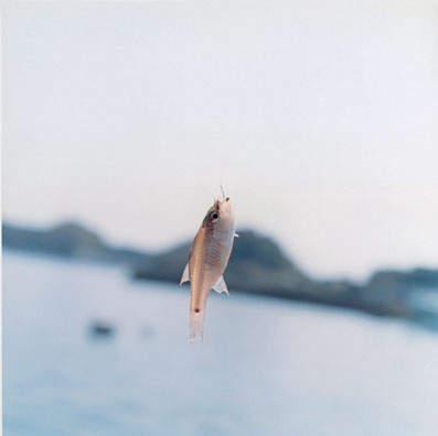 Нюансы повседневной жизни в работах Ринко Каваучи (Rinko Kawauchi)