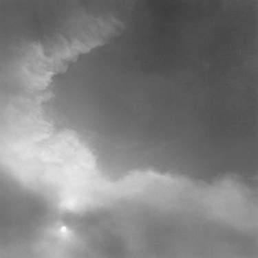 Рисунки белого цвета Уильяма Абрановича (William Abranowicz) 10