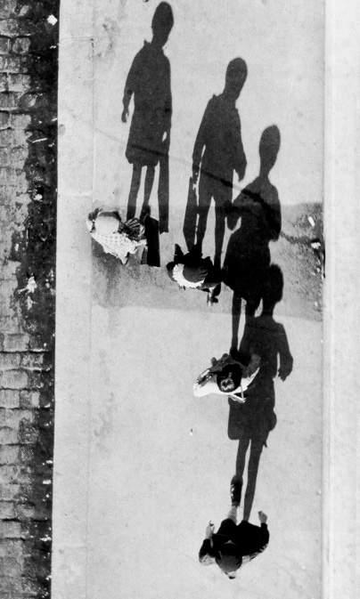 Величайший график фотографии Андре Кертеc(Andre Kertesz) 14