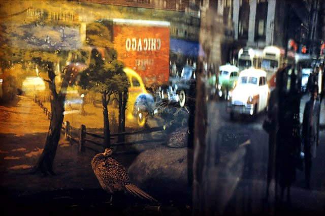 Знаменитый фотограф Эрнст Хаас (Ernst Haas)