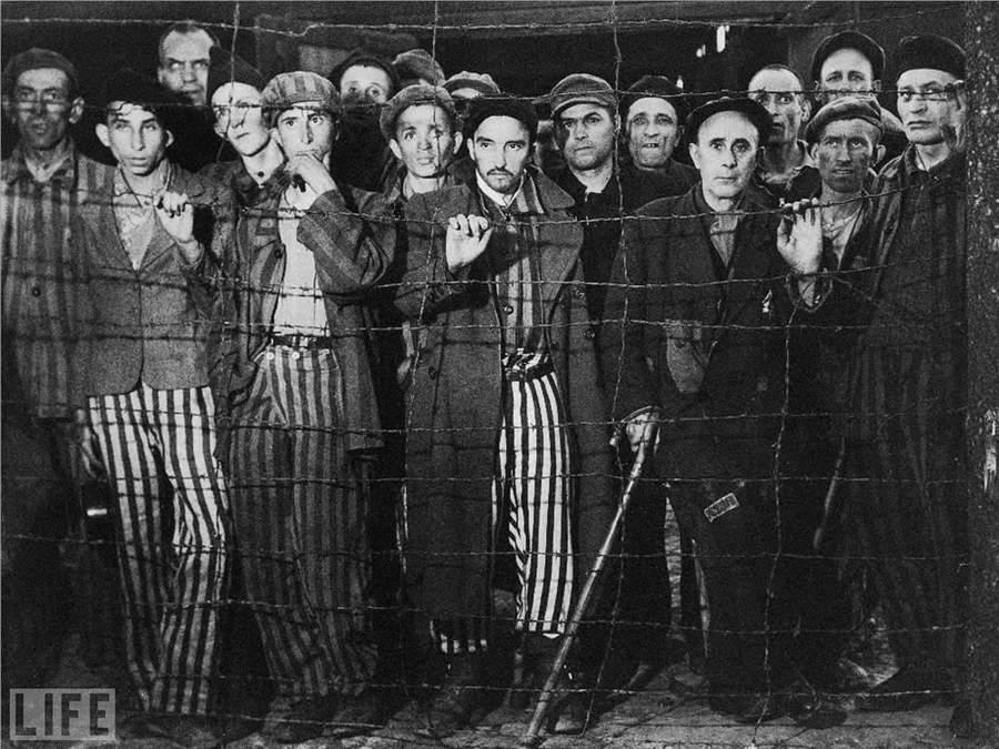 История в фотографиях Фотография Маргарет Бурк-Уайт (Margaret Bourke-White), «Освобождение Бухенвальда», 1945 год