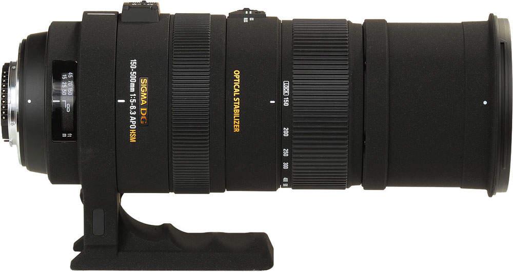 Как фотографировать птиц в дикой природе Sigma 150-500 мм f / 5-6.3