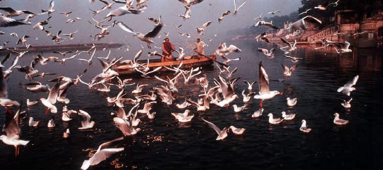 https://photopoint.com.ua/wp-content/uploads/2014/11/Ragu-Rajj-Raghu-Rai-i-ego-mnogolikaya-Indiya.jpg