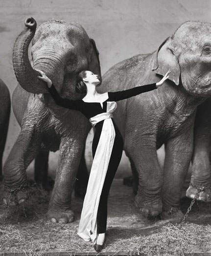 110 лет Кристиан Диор (Christian Dior) 21