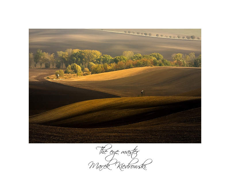 Марек Кедровский (Marek Kiedrowski) и его пейзажи 17