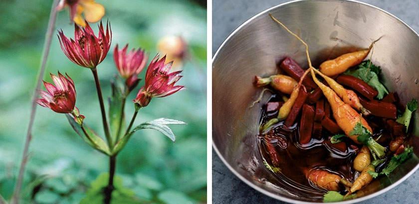 Топ 10 лучших фотографов еды Джонатан Ловкин (Jonathon Lovekin)