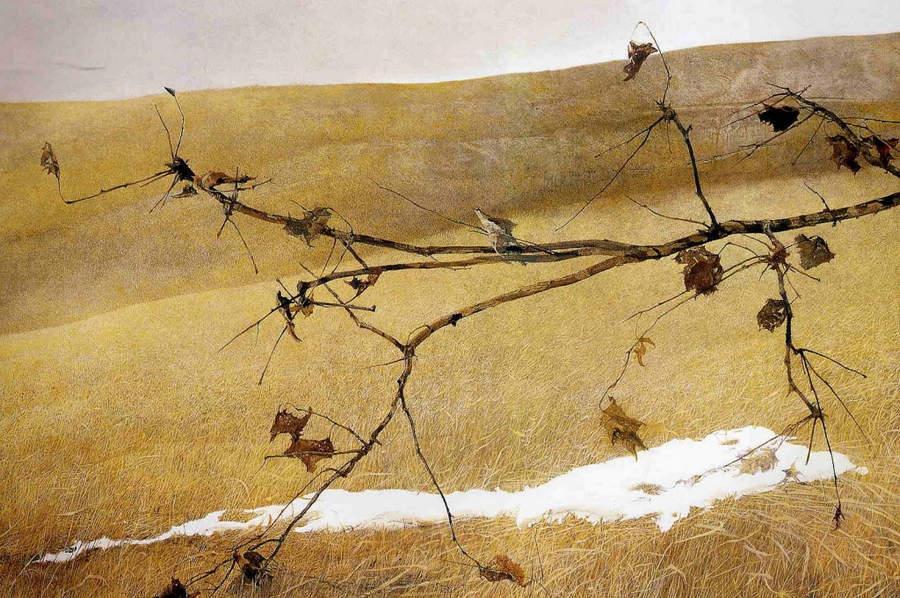 Эндрю Уайет (Andrew Wyeth) и американский реализм 20-го века 2