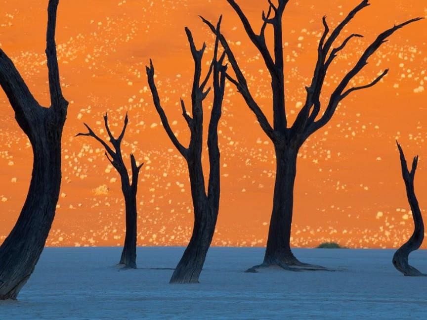 10 самых фантастических мест на Земле Национальный парк Намиб-Науклуфт (Naukluft Park), Намибия
